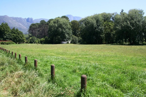 Alphen Trail_Cape Town_South Africa_Magic Mountain