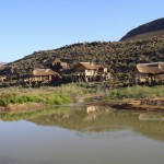 Aquila_Safari_Cape Town_Western Cape_South Africa_Magic Mountain