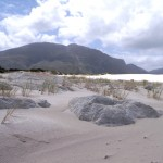 Betty's Bay Beach_Cape Town_South Africa_Magic Mountain
