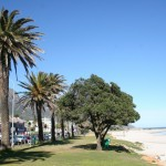 Camps Bay Beach_Cape Town_South Africa_Magic Mountain