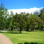 De Waal Park_Cape Town_South Africa_Magic Mountain