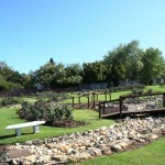 Durbanville Rose Garden_Cape Town_South Africa_Magic Mountain