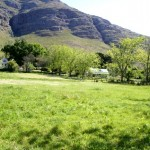 Glennconner_Stellenbosch_South Africa_Magic Mountain