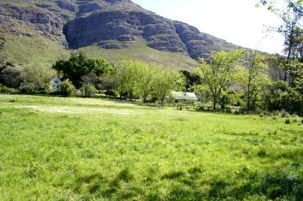 Glennconner_Stellenbosch_South Africa_Magic Mountain