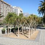 Hertzog Boulevard_Heerengracht Street__Cape Town_South Africa_Magic Mountain