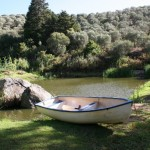 L'Olivier_Olive Farm_Stellenbosch_South Africa_Magic Mountain