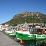 Kalk Bay Harbour_Western Cape_South Africa_Magic Mountain