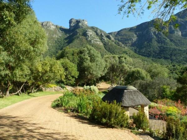 Kirstenbosch Botenical Garden_Cape Town_South Africa_Magic Mountain