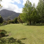 Marigold_Franschhoek_South Africa_Magic Mountain