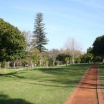 Maynardville Park_Cape Town_South Africa_Magic Mountain