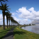 Woodbridge Island_Milnerton_Cape Town_South Africa_Magic Mountain