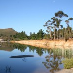 Namibian Saltwater_Worcester_South Africa_Magic Mountain