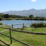 Trout Farm_Cape Town_Western Cape_Magic Mountain